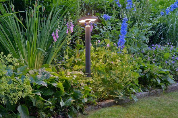 Tiere Licht Garten 4