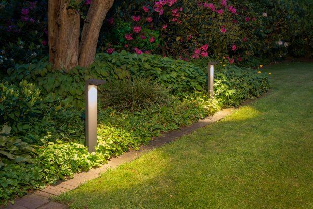 Tiere Licht Garten 5