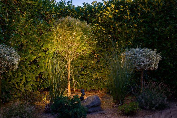 Licht im Garten, Gartenlicht, Gartenbeleuchtung, Leuchte, Lampe, Prediger Lichtjournal
