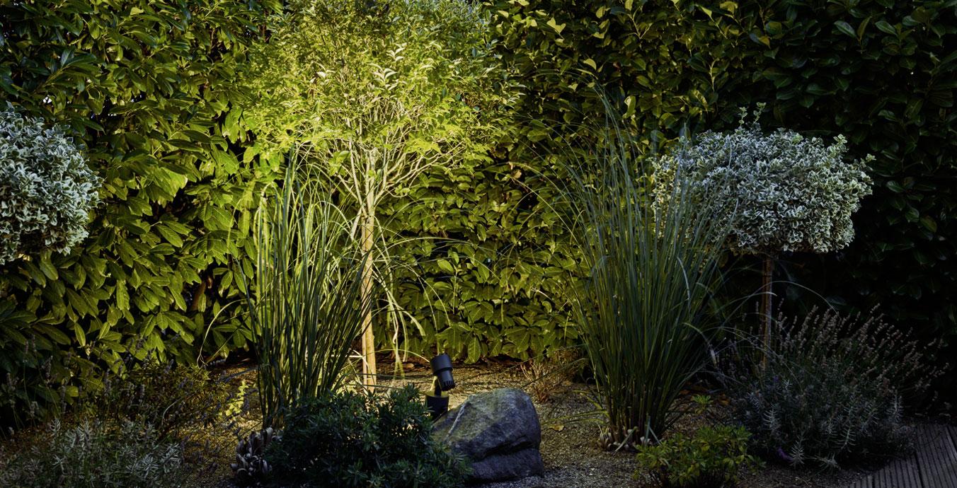 Der Erdspießstrahler illuminiert die Bepflanzung und sorgt gleichzeitig für Helligkeit.