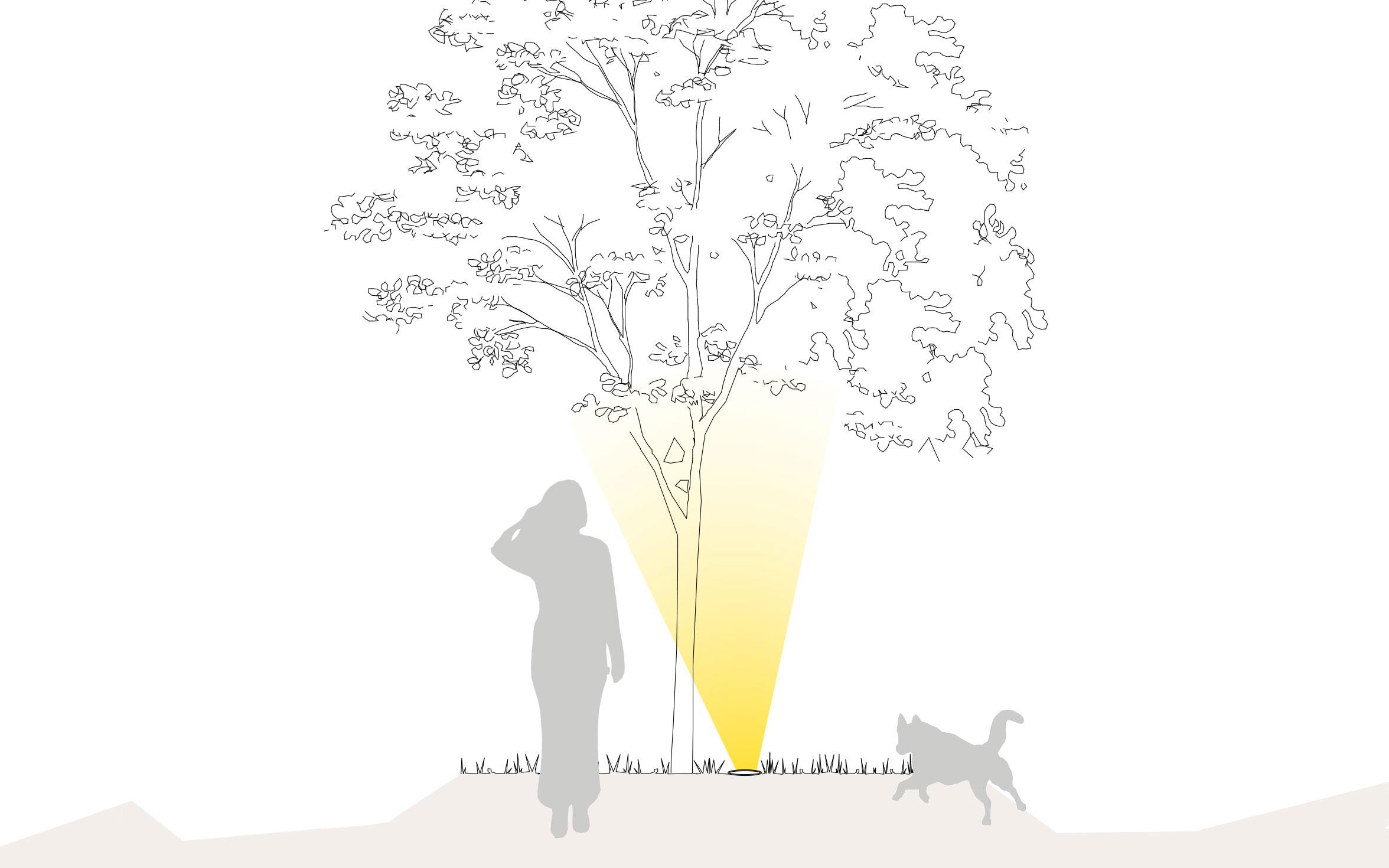 Beleuchtung von Pflanzen und Bäumen