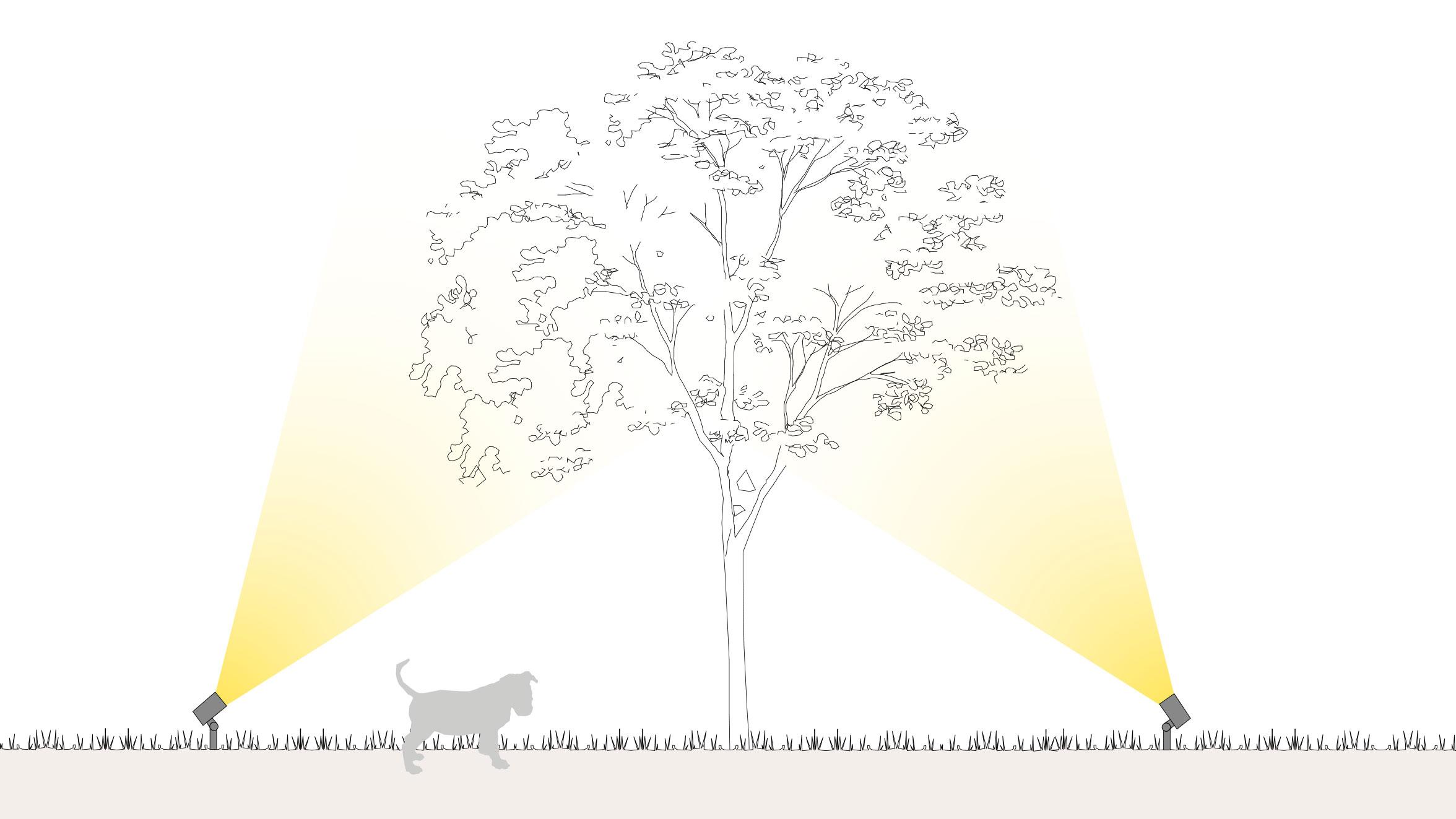 Beleuchtung von Bäumen & Pflanzen
